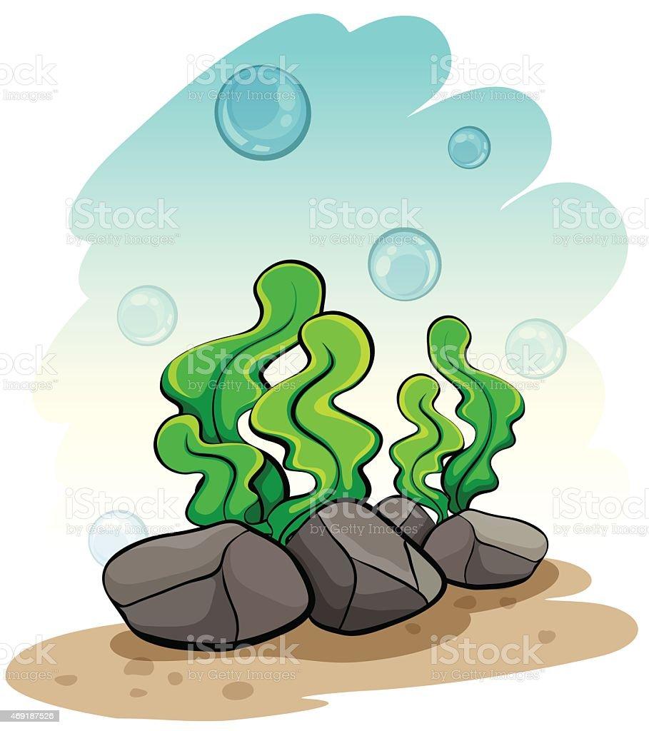 Seaweeds under the sea vector art illustration