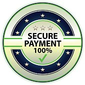 Secure payment silver label with stars.