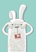 funny rabbit is looking on you