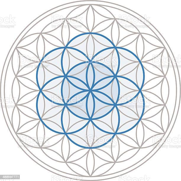 Seed of life in flower of life vector id488597771?b=1&k=6&m=488597771&s=612x612&h=vneejpq6 ljrzi8jlplht8yydk6acqdmrqbglx67ixg=