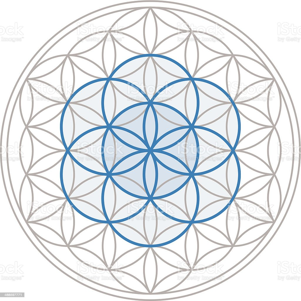 Samen des Lebens In der Blume des Lebens – Vektorgrafik
