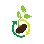 seed plants. eps 10 vector file