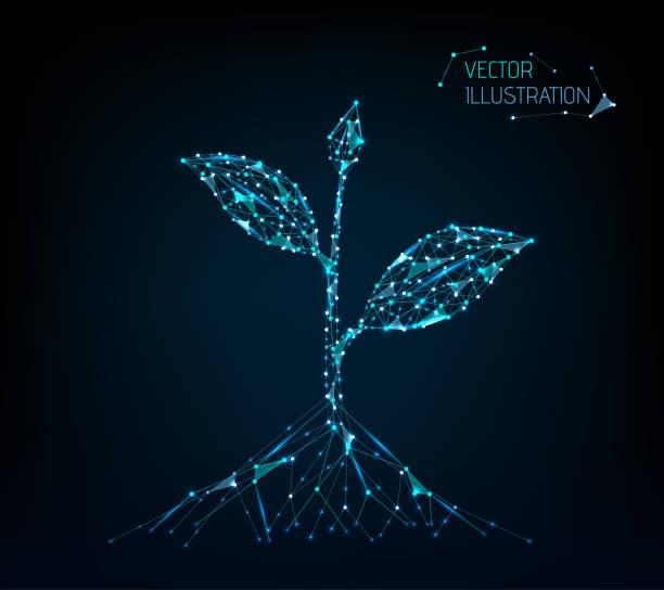 ilustrações de stock, clip art, desenhos animados e ícones de seedling. low poly blue. polygonal abstract growth or health illustration. vector. - agricultura