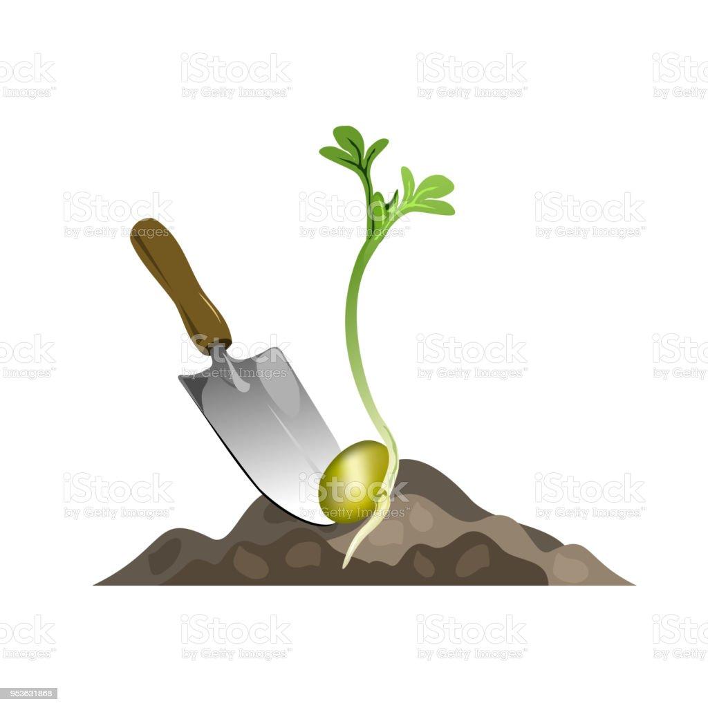 Seedling planting, vector  illustration. vector art illustration