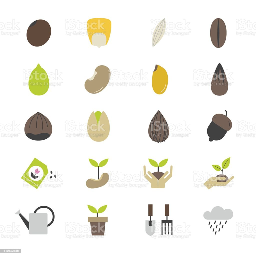 Seeds and Gardening Flat Color Icons vector art illustration