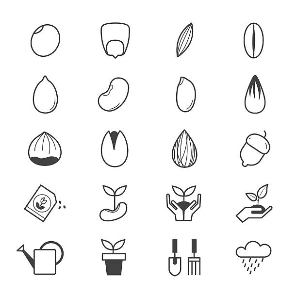 Seeds and Gardening Icons Line vector art illustration