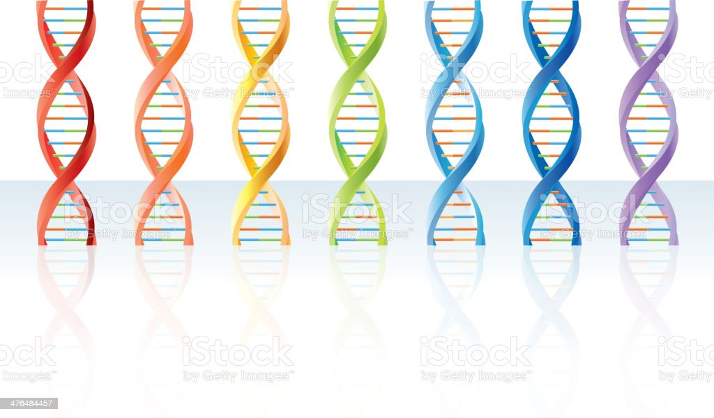 DNA segments royalty-free dna segments stock vector art & more images of biology