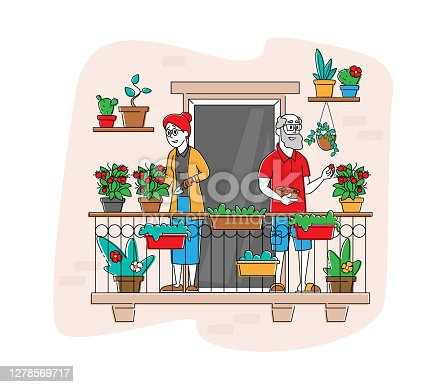istock Senior Characters Enjoying Gardening Hobby Working on Balcony Garden Care of Plants and Watering Greenery and Vegetable 1278569717