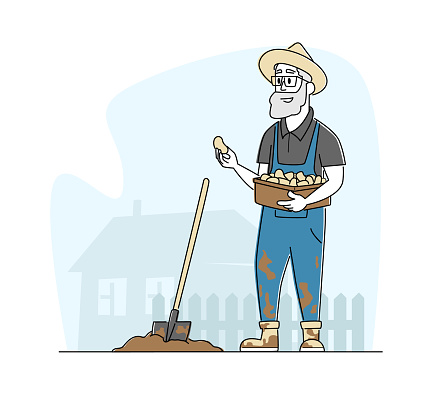 Senior Farmer Character in Worker Overalls Working in Garden Digging Soil and Planting Potato in Village or Countryside