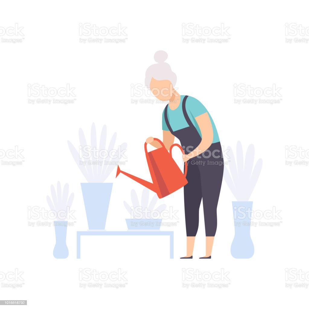 Senior woman character watering flowers with can, elderly people leading an active lifestyle social concept vector Illustration on a white background vector art illustration