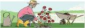Senior Woman Planting Roses