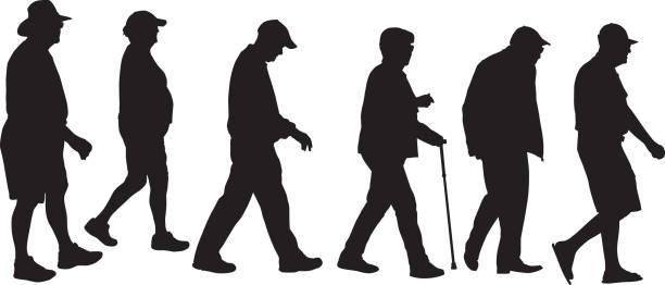 ilustrações, clipart, desenhos animados e ícones de idosos andando silhouetts - idoso