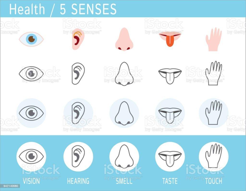 5 Sinneiconset Touch Geruch Gehör Vision Geschmack Auge Nase Ohr ...