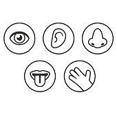 Senses icons