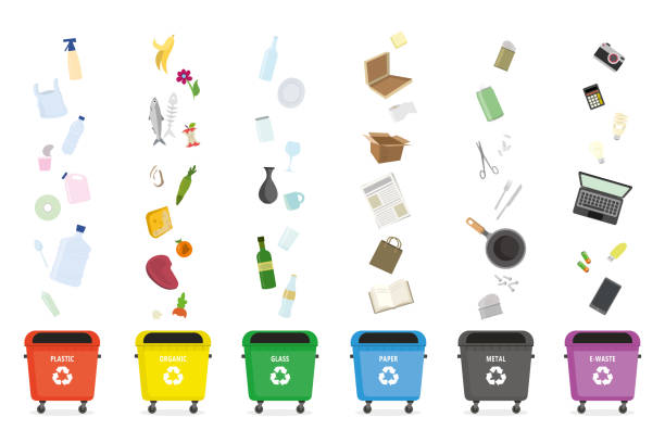 illustrations, cliparts, dessins animés et icônes de collecte séparée des ordures. différentes poubelles pour chaque type d'ordures. bannière éducative ou modèle de conception - dechets