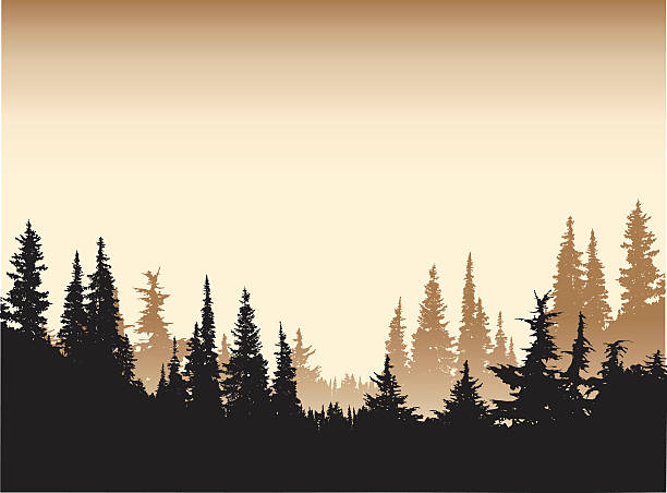 Sepia Tone Forest Background A vector silhouette illustration of a tree line of dense forest pine trees in a sepia tone. treelined stock illustrations