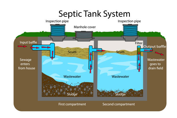 Septic Tank diagram. Septic system and drain field scheme . An underground septic tank illustration. Infographic with text descriptions of a Septic Tank. Domestic wastewater. Flat vector EPS poisonous stock illustrations