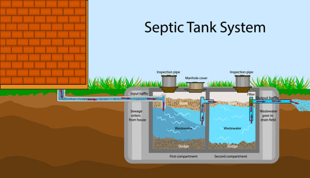 Septic Tank diagram. Septic system and drain field scheme. An underground septic tank illustration. Infographic with text descriptions of a Septic Tank. Domestic wastewater. Flat stock vector EPS 10 poisonous stock illustrations