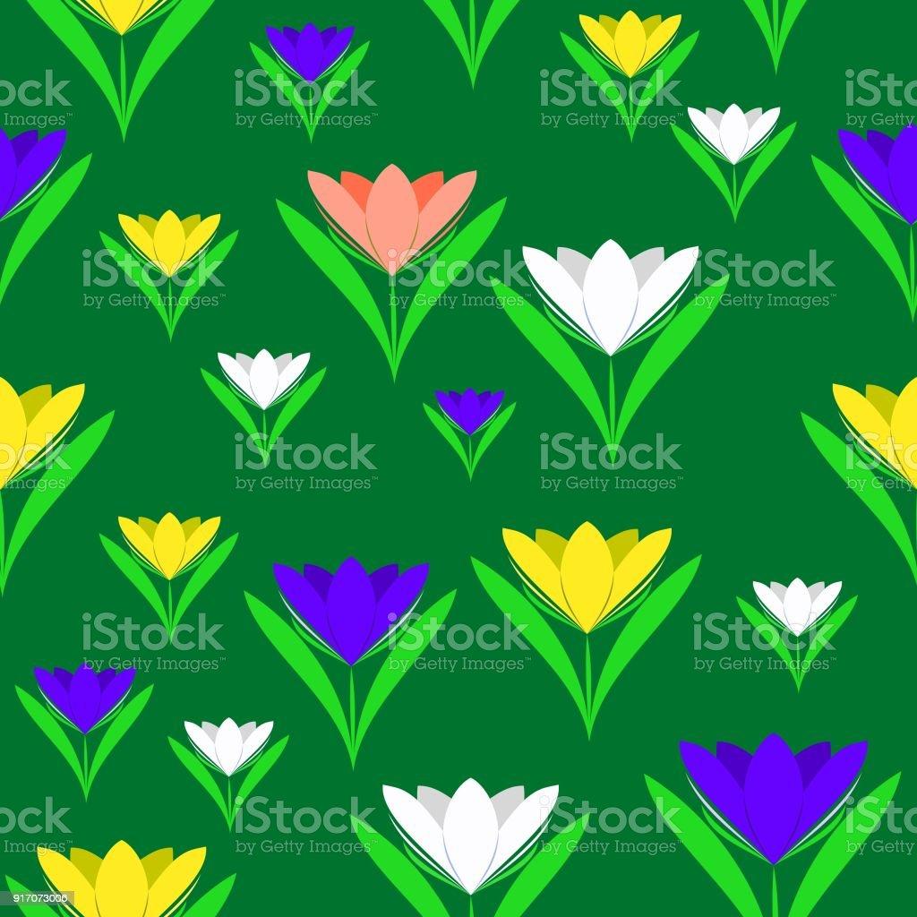 Sepurple White Yellow Crocus Flowers On Dark Green Background Stock