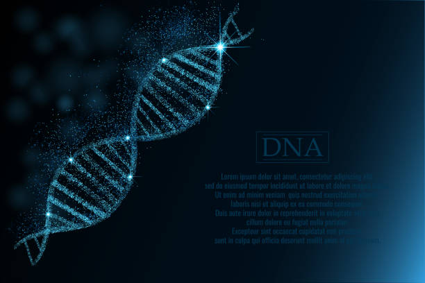 dna sequence, dna code structure with glow. - dna stock illustrations, clip art, cartoons, & icons