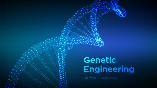 dna sequence. wireframe dna molecules structure mesh. dna code editable template. science and technology concept. vector illustration. - bio tech stock illustrations, clip art, cartoons, & icons