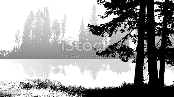 waterfront image in black and white with closeup of a pine tree