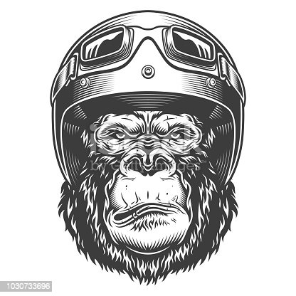 Serious gorilla in monochrome style in the biker helmet. Vector illustration