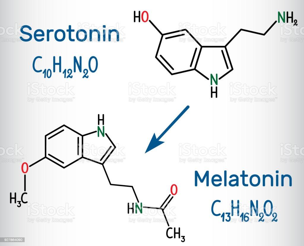 Serotonine en melatonine molecuul, hormoon van geluk en slaap hormoon. Structurele chemische formule royalty free serotonine en melatonine molecuul hormoon van geluk en slaap hormoon structurele chemische formule stockvectorkunst en meer beelden van antidepressiva