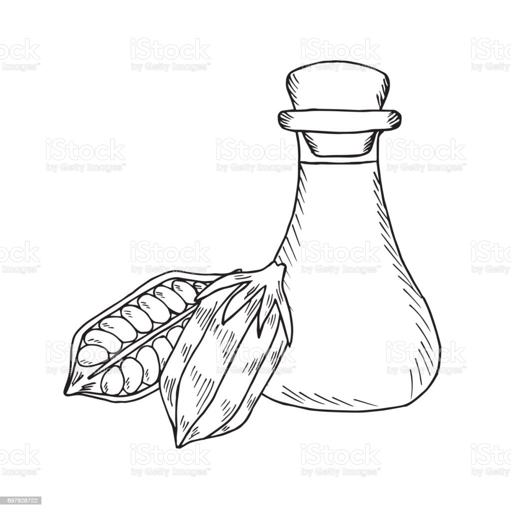 Sesame Oil Bottle Nuts 3 Stock Vector Art & More Images of ...