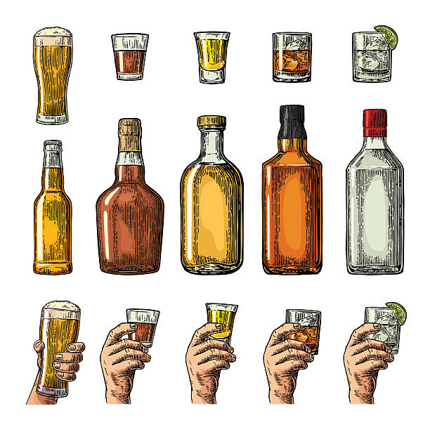 ilustraciones, imágenes clip art, dibujos animados e iconos de stock de set alcohol drinks bottle, glass, hand holding beer, gin, tequila - alcohol