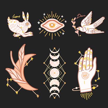 Set astrology signs vector illustration