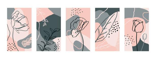 ilustrações, clipart, desenhos animados e ícones de definir fundos com flores de papoula e elementos flora. papéis de parede móveis abstratos no estilo minimalista da tendência - papoula planta