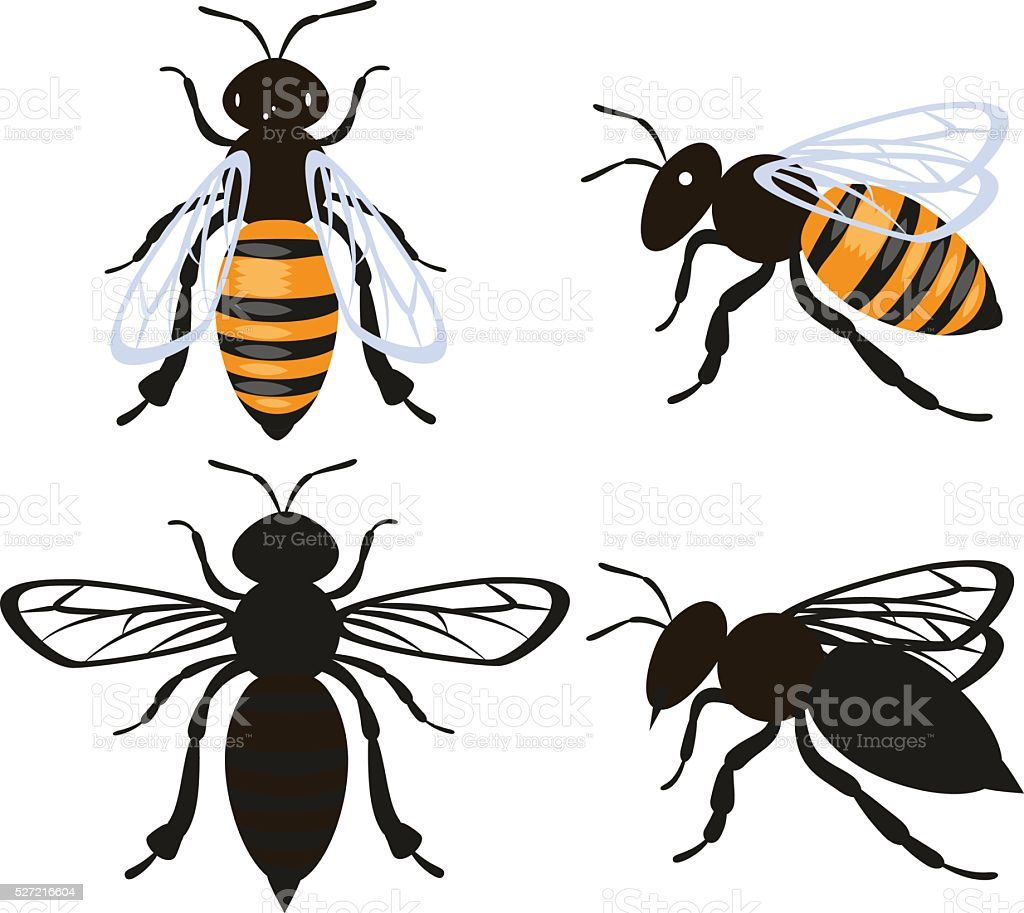 Set bee insect vector art illustration