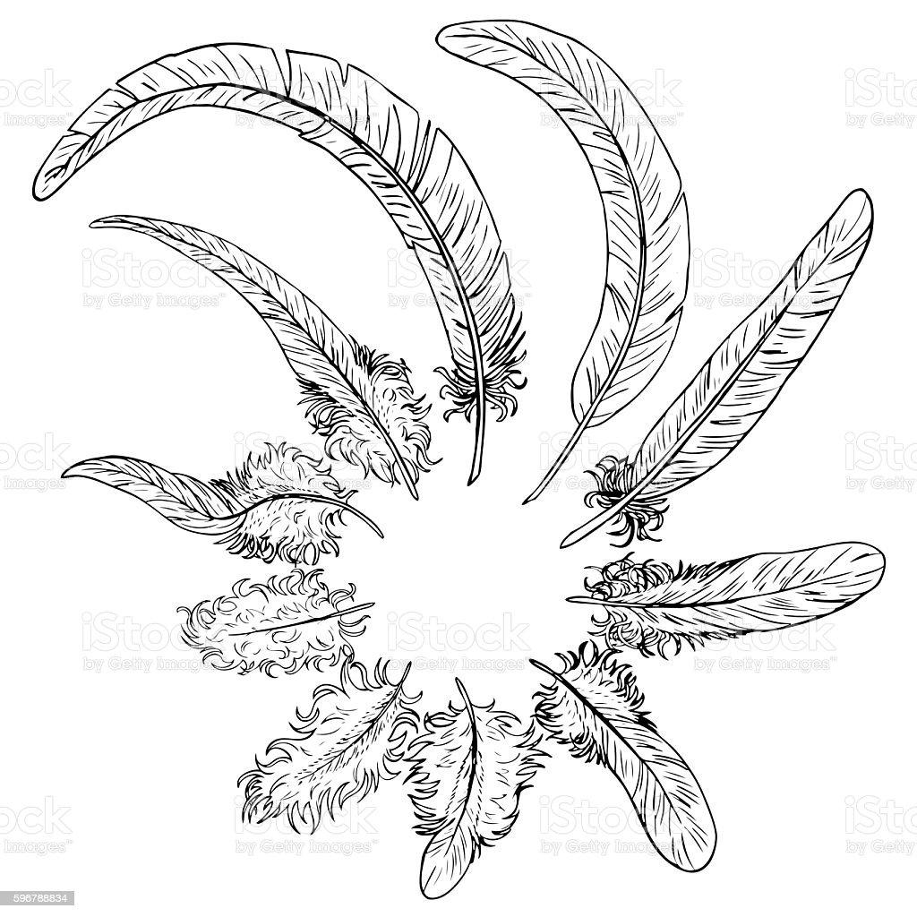 Set black contour feathers on white векторная иллюстрация