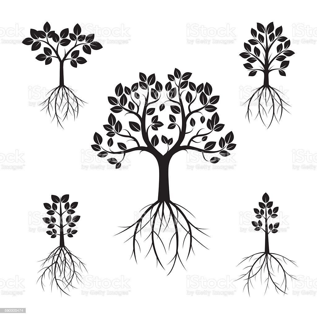 Set Black Trees and Roots. Vector Illustration. royaltyfri set black trees and roots vector illustration-vektorgrafik och fler bilder på bildbakgrund