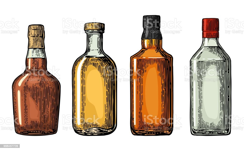 Set bottle for gin, rum, whiskey, tequila. vector art illustration