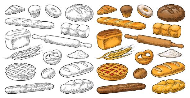 Set bread. Vector black vintage engraving illustration Set bread. Isolated on the white background. Vector color and black hand drawn vintage engraving illustration for poster, label and menu bakery shop. bread backgrounds stock illustrations