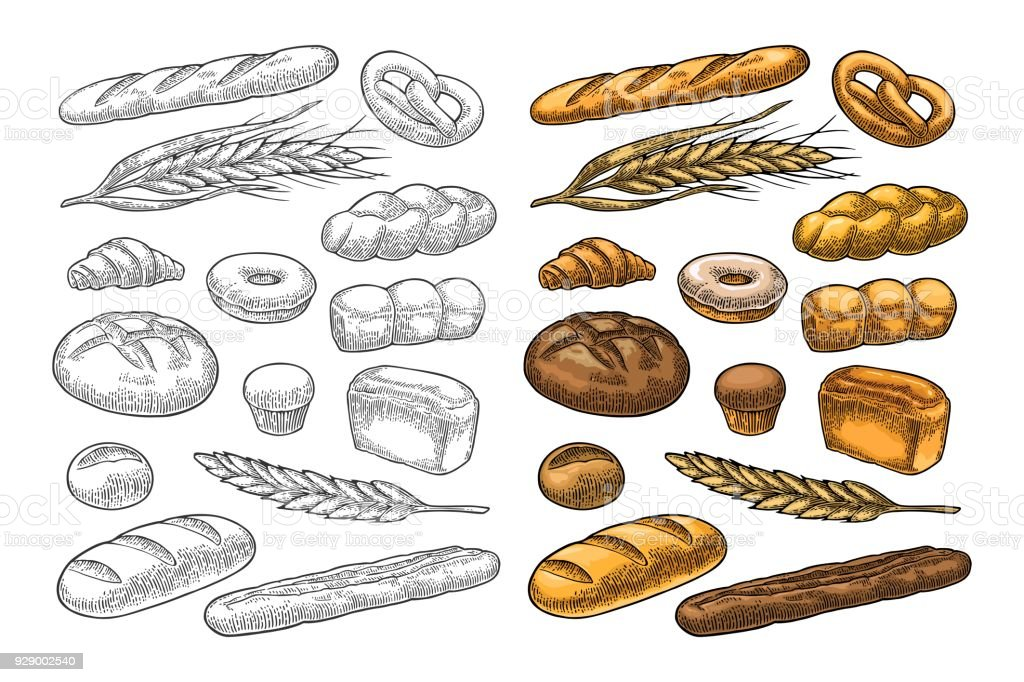 Set bread. Vector color vintage engraving vector art illustration