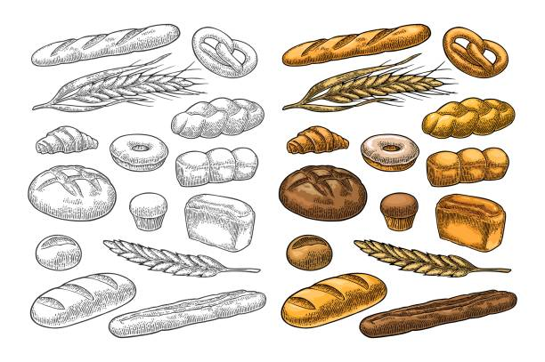 Set bread. Vector color vintage engraving Set bread. Isolated on the white background. Vector color hand drawn vintage engraving illustration for poster, label and menu bakery shop. bread stock illustrations