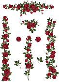 set brushes flowers climbing red roses