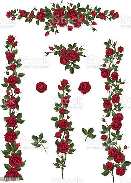 Set brushes flowers climbing red roses vector id511473944?b=1&k=6&m=511473944&s=612x612&h=pfoempfm48z0l22nt6gz7erzfayd owsafkzav62yta=
