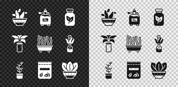 Set Cactus peyote in pot, Garden sprayer for fertilizer, Fertilizer bottle, Exotic tropical plant, Pack full of seeds of, Plant, and icon. Vector