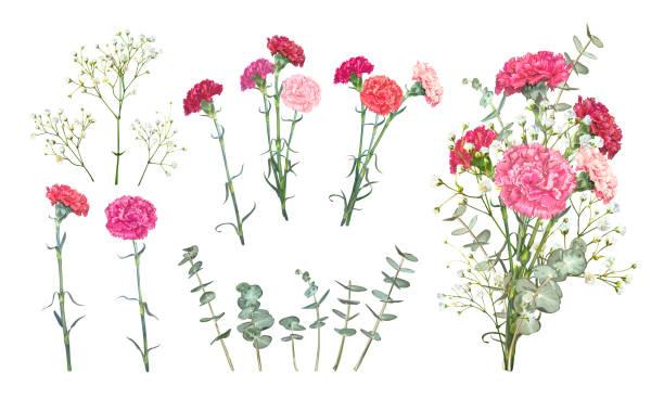 カーネーションの花を設定 - 花束点のイラスト素材/クリップアート素材/マンガ素材/アイコン素材