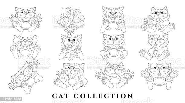 Set cartoon charming cats sketch of funny cats with emotions black a vector id1168218765?b=1&k=6&m=1168218765&s=612x612&h=epegbntguw31ytkfcjvbj 7xnq5yxijuettuzag4zye=