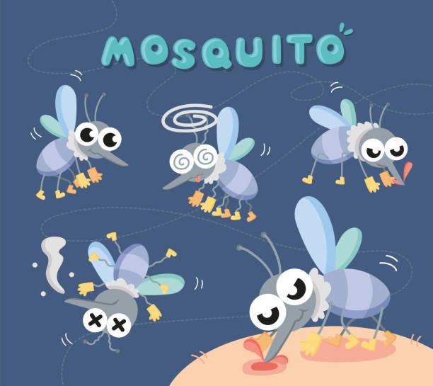 illustrazioni stock, clip art, cartoni animati e icone di tendenza di set close up mosquito - zanzare