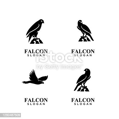 set collection falcon black icon design vector illustration
