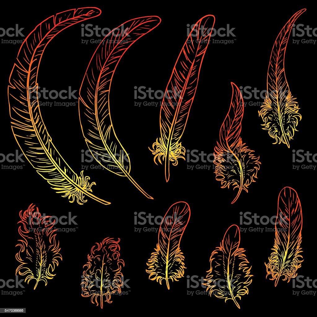 Set contour feathers fiery rooster векторная иллюстрация