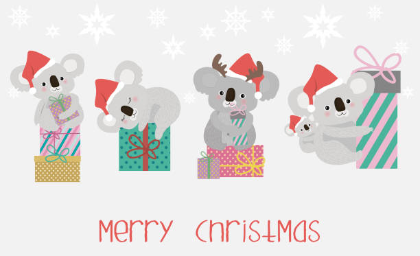 set cute koala bears and gift boxes - koala stock illustrations