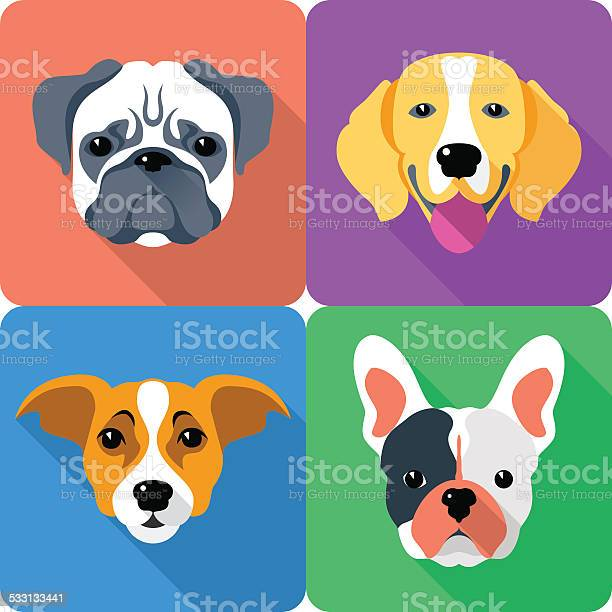 Set dog icon flat design vector id533133441?b=1&k=6&m=533133441&s=612x612&h=oa kpdge1cf2qiojfjy9yhwmlfnic8ff58wfsln725w=