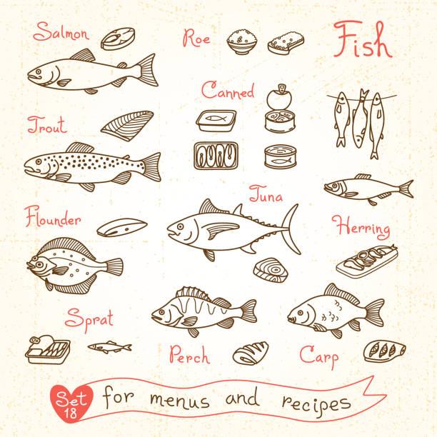 illustrazioni stock, clip art, cartoni animati e icone di tendenza di impostare disegni di pesce con design menu, ricette e fare - trout